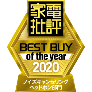 Best Buy of the year 2020